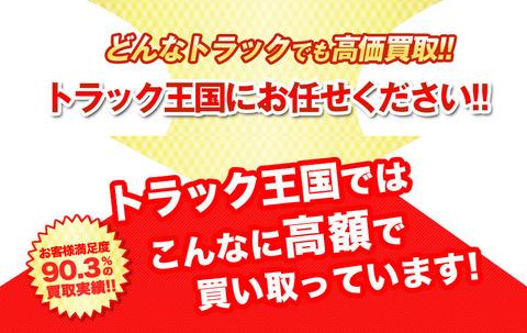 トラック王国 紹介 1
