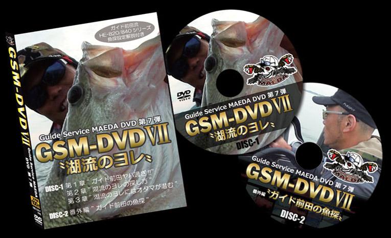 GSM-DVD7_01