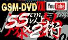 GSM-DVD8