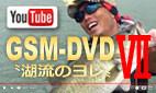 GSM-DVD7