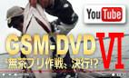 GSM-DVD6