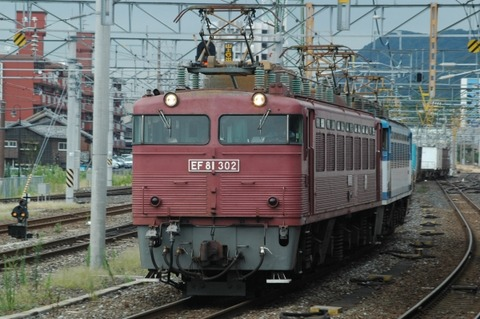 EF81302