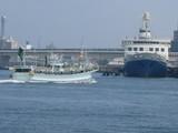 摩周丸とイカ釣り漁船