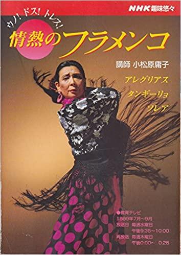 情熱のフラメンコ—ウノ!ドス!トレス! (NHK趣味悠々)
