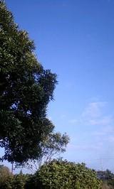 a1a6355b.jpg