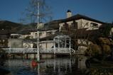 池越しの美術館