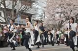 市民桜まつり #2
