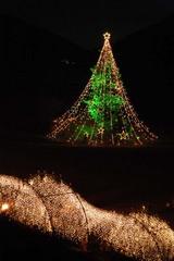 大クリスマスツリーと光のトンネル