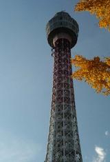 紅葉とマリンタワー