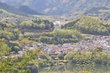 津久井湖周辺の新緑 #3