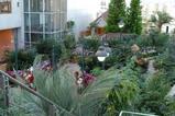 花の都公園の温室内