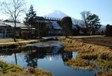 菖蒲池(約281平方メートル)