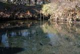 忍野村 底抜池(208平方メートル)
