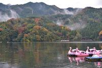 相模湖秋景色#5