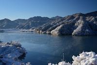 宮ヶ瀬鳥居原の雪景色#5