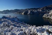 宮ヶ瀬鳥居原の雪景色#4