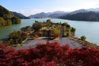 宮ヶ瀬湖鳥居原の紅葉#2
