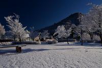 宮ヶ瀬鳥居原の雪景色#6