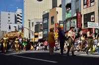 浅草サンバカーニバル#8
