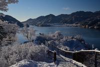 宮ヶ瀬鳥居原の雪景色#8