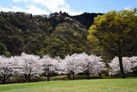 県立あいかわ公園#11
