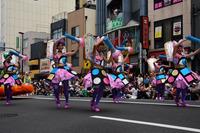 浅草サンバカーニバル#3