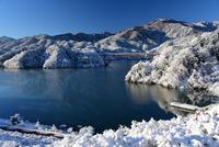 宮ヶ瀬鳥居原の雪景色#3