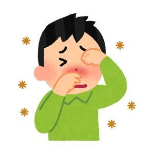花粉症 目