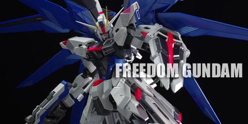 metal_freedom049
