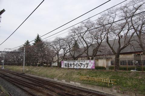 20160331matsudo_light_2