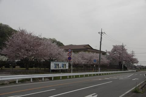 20160412yoshii_3