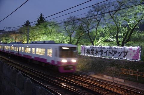 20170326sdf_sakura_02