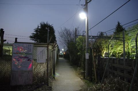 20160331matsudo_light_8