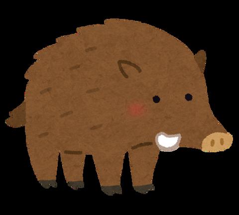 animal_inoshishi (1)