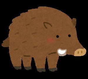 animal_inoshishi (2)