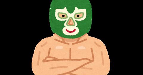 sports_pro_wrestler_lucha_libre_mask
