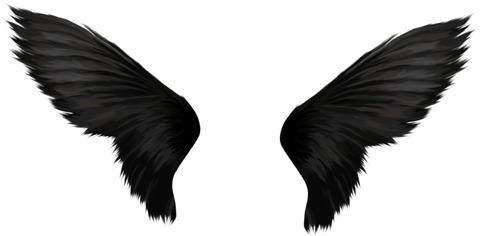 black-wings-1153751