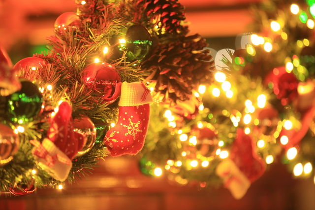 アルル クリスマス