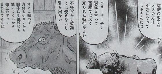 ミスター味っ子 幕末編 4巻 最終回 感想 00052