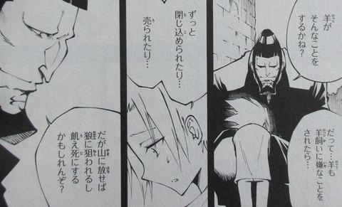 シャーマンキング マルコス 2巻 感想 ネタバレ 46