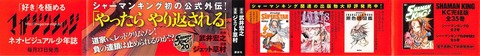 シャーマンキング レッドクリムゾン 2巻 感想 00085