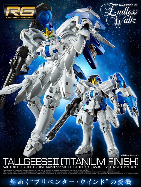 20120128_rg_tallgeeseiii_titanium_02