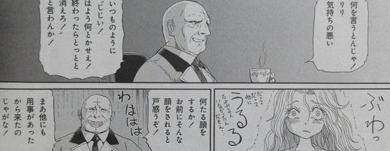 ファイブスター物語 15巻 感想 00035