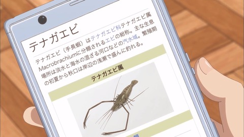 放課後ていぼう日誌 第8話 感想 00080
