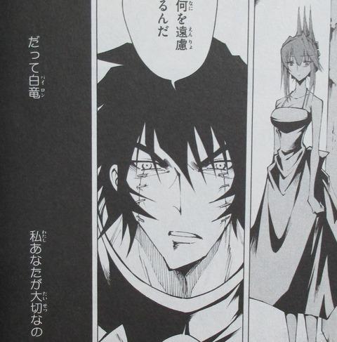 シャーマンキング レッドクリムゾン 2巻 感想 00048