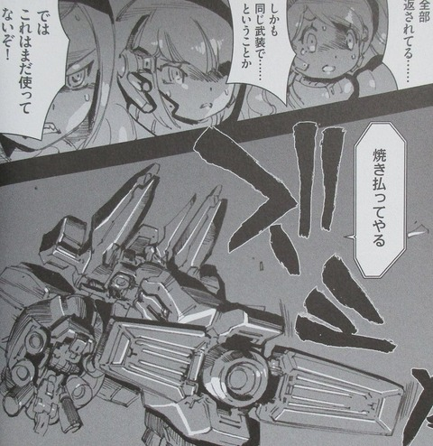 A.O.Z Re-Boot ガンダム・インレ 5巻 感想 00031