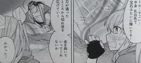 異世界ちゃんこ 6巻 感想 21