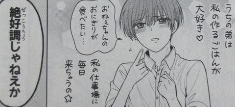月刊少女野崎くん 13巻 感想 098