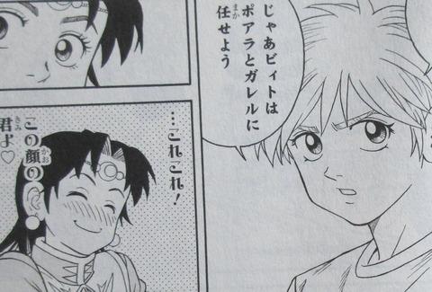 冒険王ビィト 15巻 感想 086