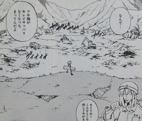 シャーマンキングzero 1巻 感想 0083